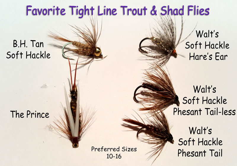 Trout Spey Flys