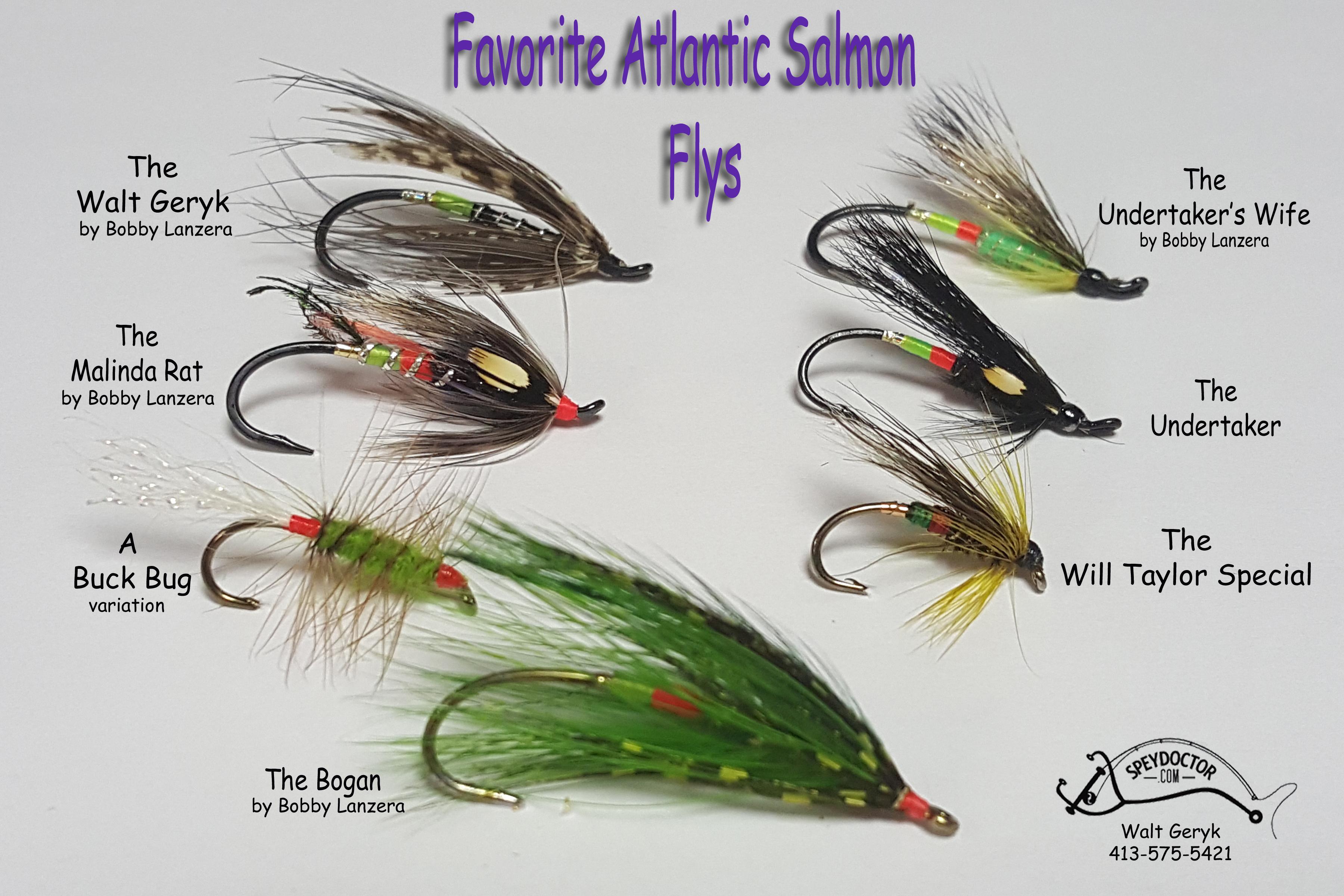 Favorite atlantic dsalmon Flys